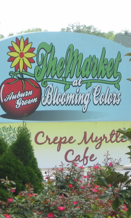 Crepe Myrtle Cafe The Market at Blooming Colors photo by Kathy Miller
