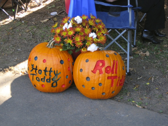 House divided Ole Miss Hotty Toddy and Roll Tide photo by Kathy Miller
