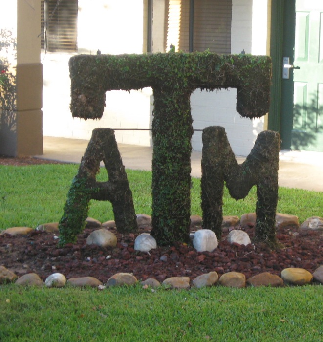 Vineyard Court Hotel topiary Texas A&M photo by Kathy Miller