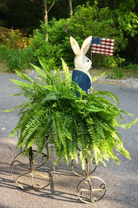 Patriotic Bunny In Fern photo by Kathy Miller