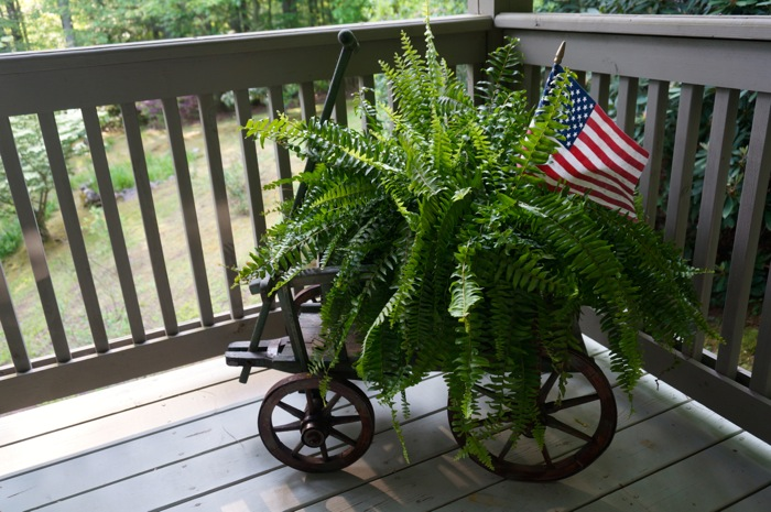 American Flag in Fern in antique wagon photo by Kathy Miller