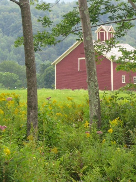 Red Barn on The Hollow in Dorset VT photo by Kathy Miller