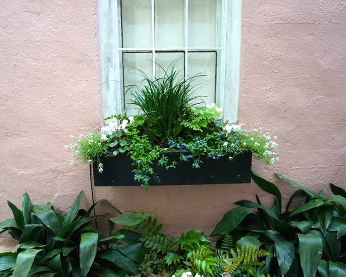 Pink House with window box photo by Kathy Miller