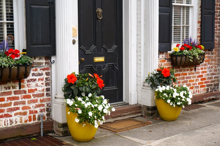 Yellow pots with flowers Charleston, SC photo by Kathy Miller