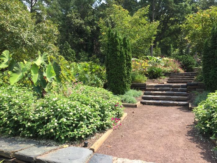 Duke Gardens pathway photo by Kathy Miller