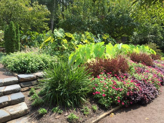 Sarah P. Duke Gardens photo by Kathy Miller