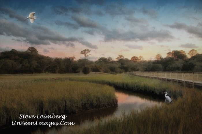 Marsh At Sunset With Birds II photograph by Steve Leimberg