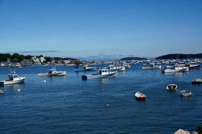 Stonington Harbor with hundreds of boats photo by Kathy Miller