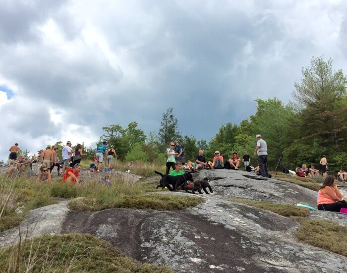 Dogs and people having fun on Little Green Mountain waiting solar eclipse 2017 photo by Kathy Miller