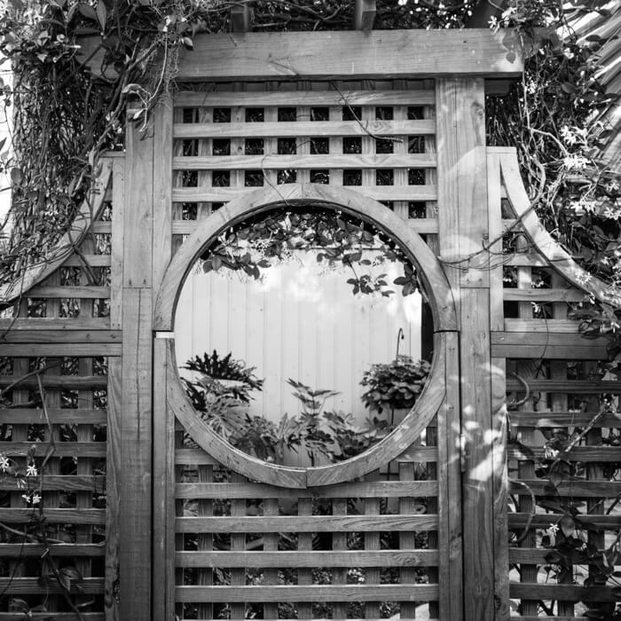Wilsterman's courtyard gate black and white photo by Susan Scarborough