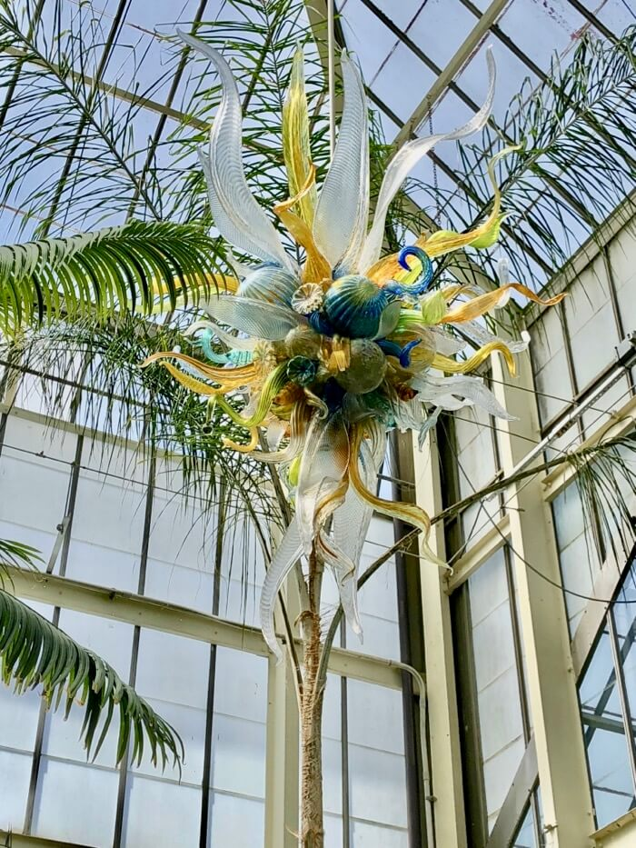 Burnished Amber, Citron and Teal Chandeliers abstract- Chihuly at Biltmore photo by Kathy Miller