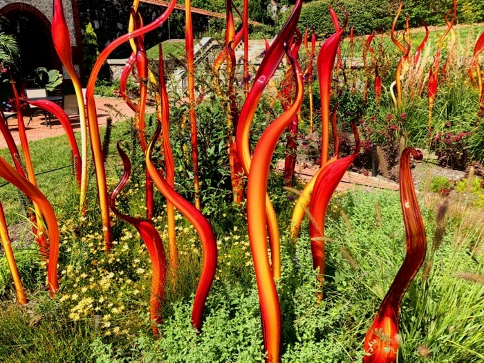Cattails and Copper Birch Reeds 2015-Chihuly at Biltmore photo by Kathy Miller