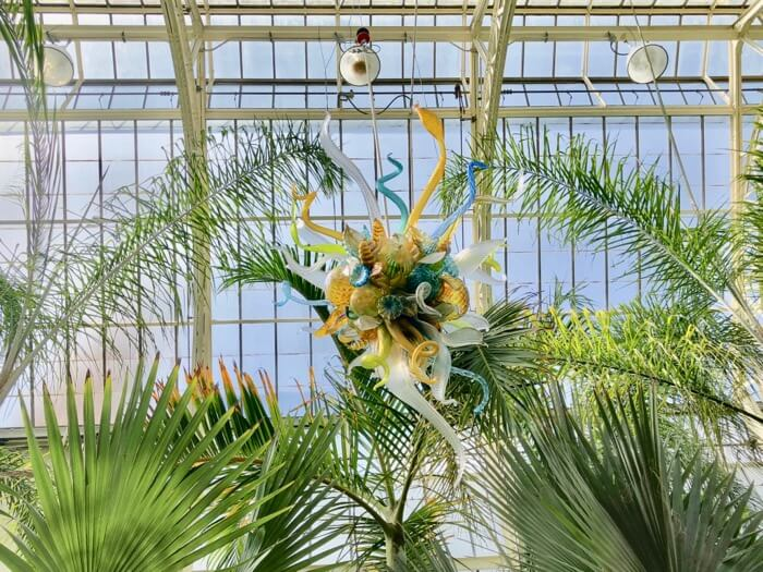 Chandelier-Chihuly at Biltmore photo by Kathy Miller