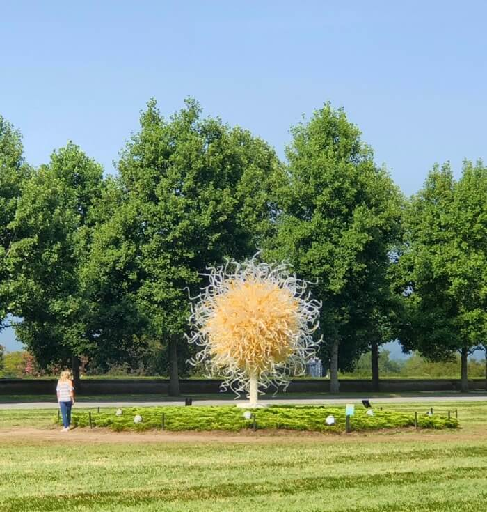 Sole d'Oro-Chihuly at Biltmore photo by Kathy Miller