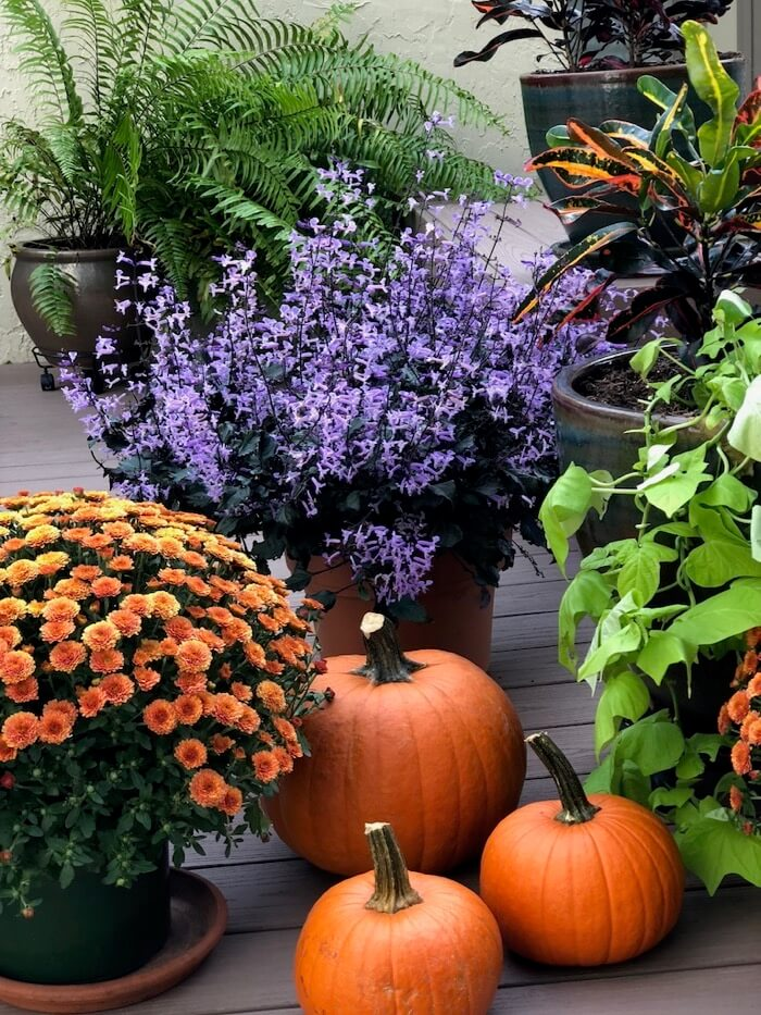 Fall front porch decorations photo by Kathy Miller