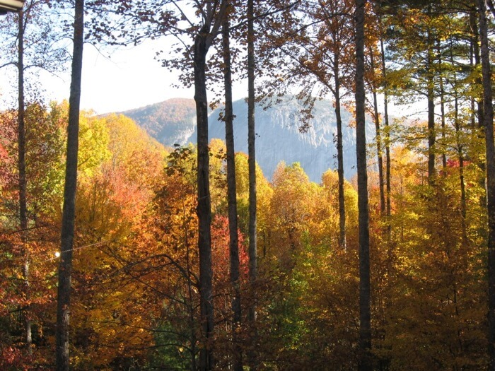 Fall colors from House Cashiers, NC photo by Kathy Miller