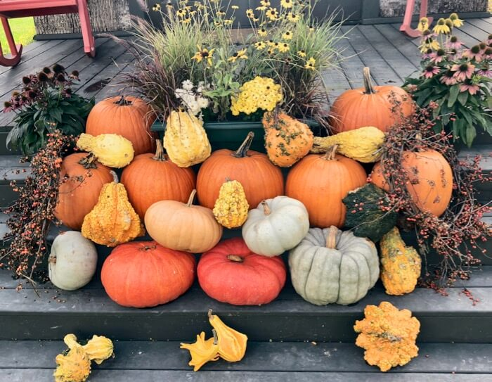 Fall heirloom pumpkins and squash photo by Kathy Miller