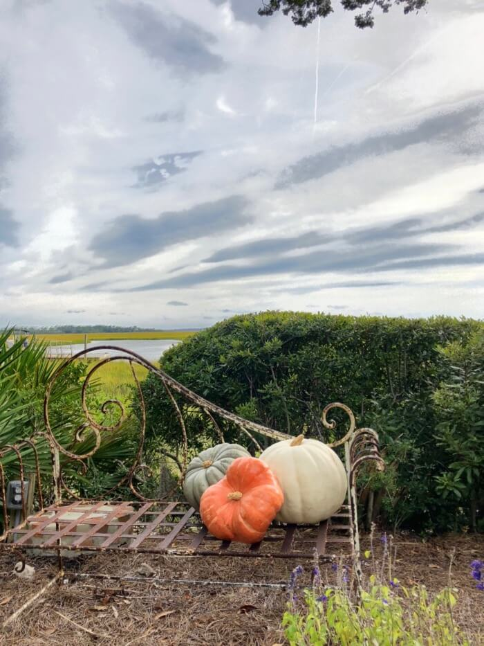 Heirloom pumpkins with a glorious sky and marsh view photo by Kathy Miller