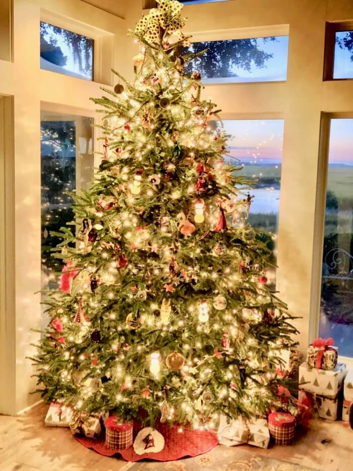 Christmas Tree on Marsh Creek photo by Kathy Miller