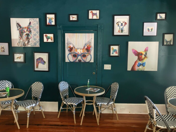 The dog wall...gallery style photo by Kathy Miller