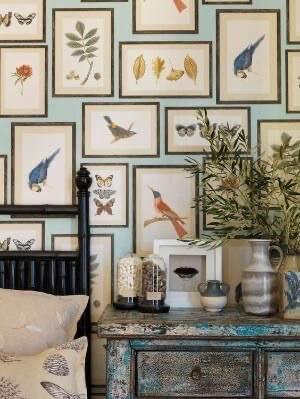 Birds and botanicals Indulgy Pinterest